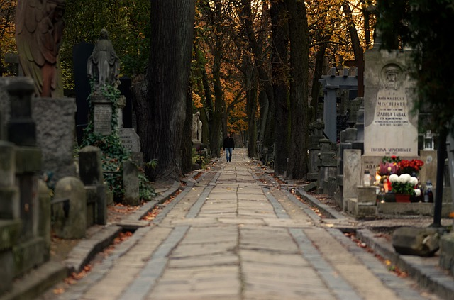 cesta hřbitovem